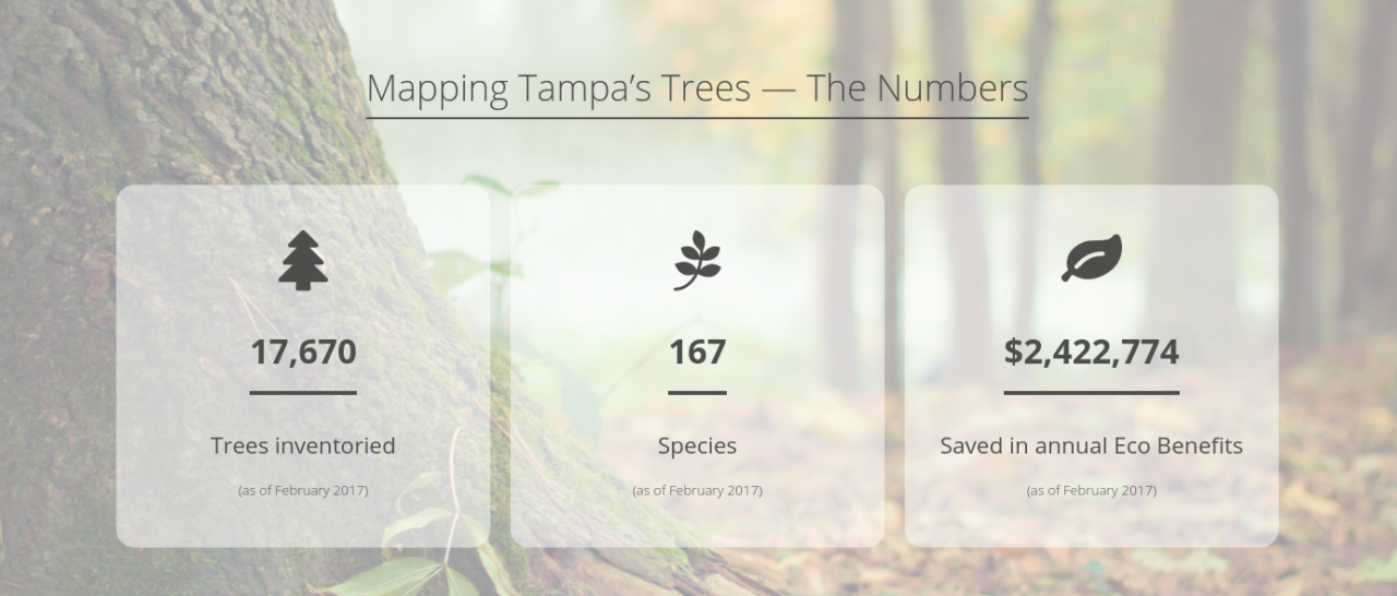 https://treemasterstreeservice.com/wp-content/uploads/2020/09/Screenshot-2020-09-10-at-3.54.13-PM-1280x546.png