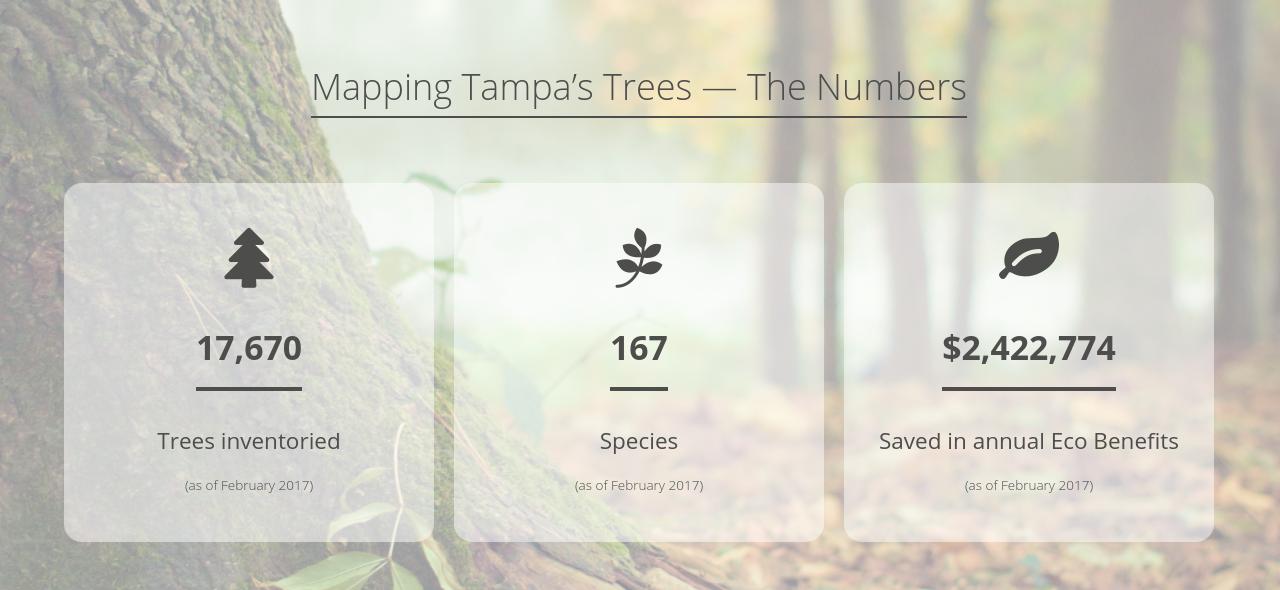 https://treemasterstreeservice.com/wp-content/uploads/2020/09/Screenshot-2020-09-10-at-3.54.13-PM-1280x590.png