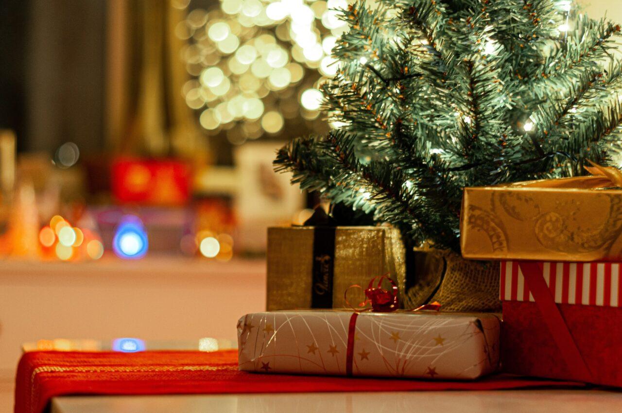 https://treemasterstreeservice.com/wp-content/uploads/2020/12/live-christmas-tree-1280x850.jpg